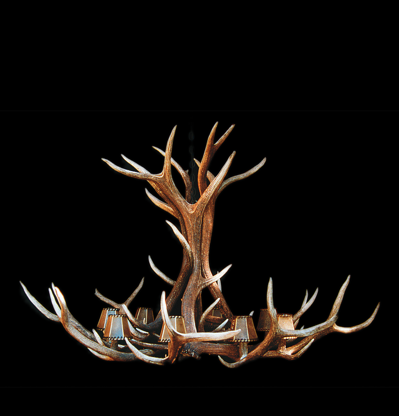 Elk Horn Chandelier for Sale