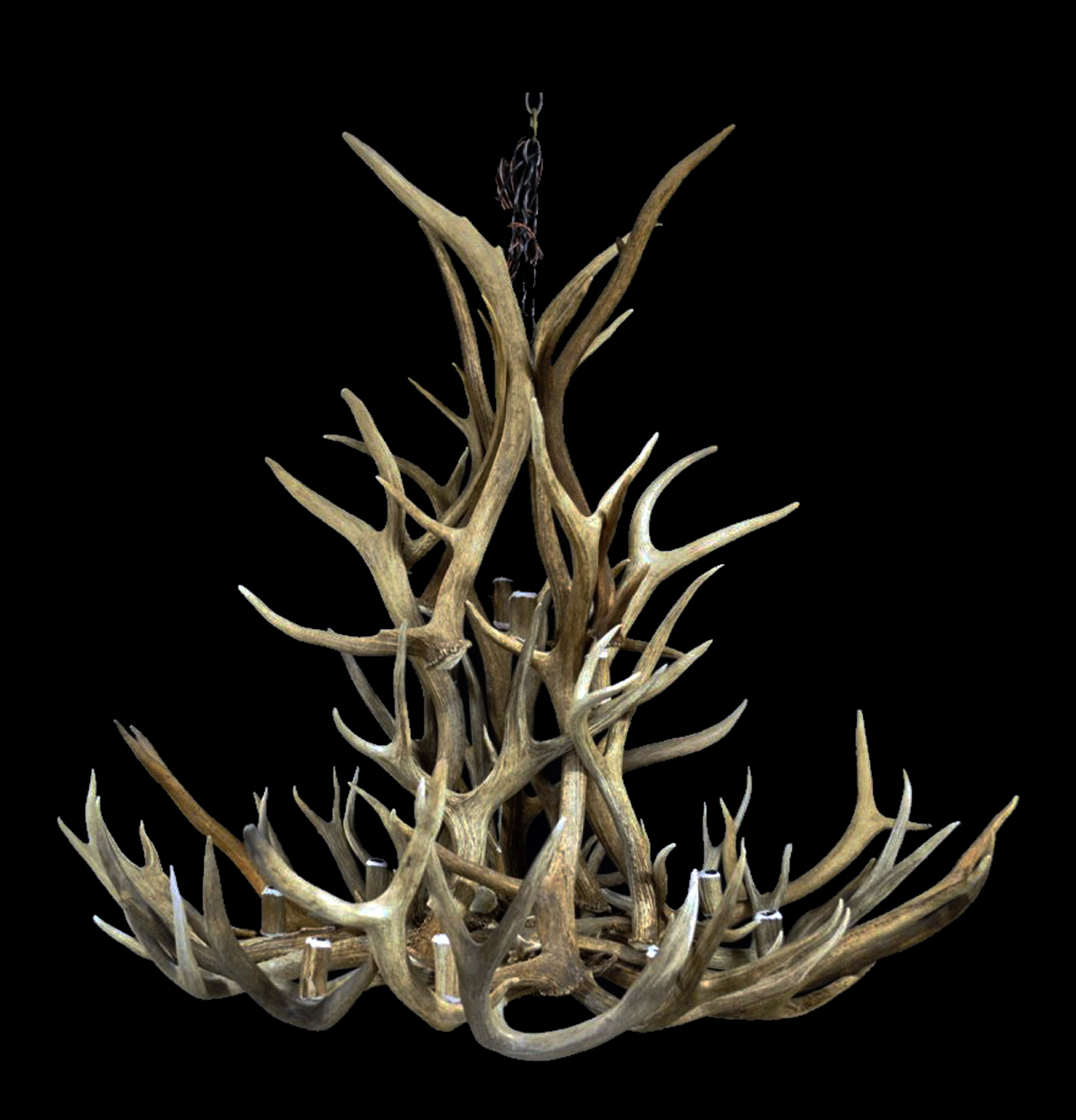 real antler chandeliers much better than CDNantler