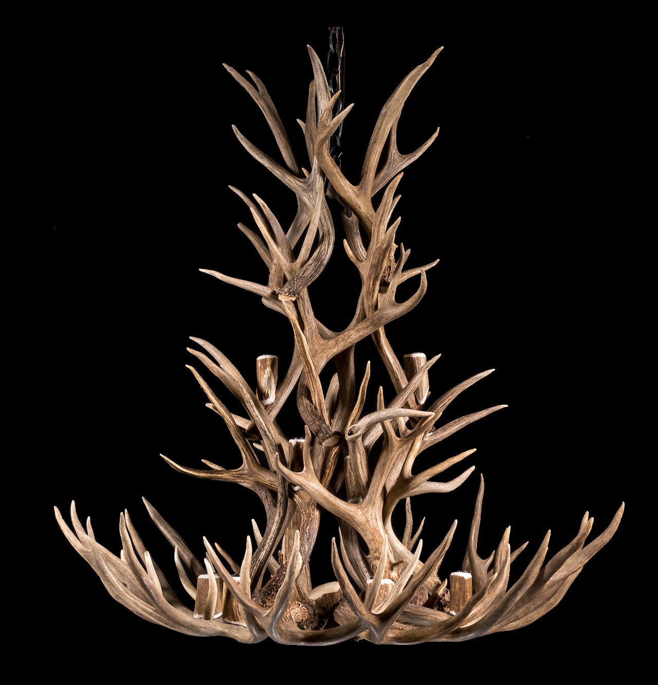 Antler Chandelier made with mule deer antler