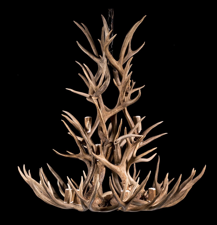 Chandeliers antler chanderliers lighting company antler chandelier made with mule deer antler mozeypictures Gallery