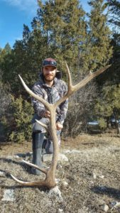 Largest elk antler shed found in Montana